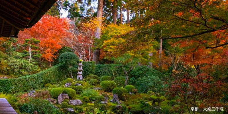京都のミラブルシャワーヘッド設置ホテル